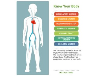 Body systems ccuart Choice Image
