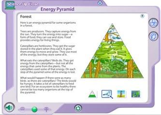 english essays the internet learning